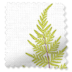 Angel Ferns Olive swatch image